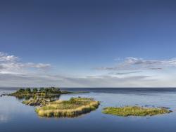Hållnäskusten. Sweden