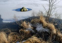 Lake shore, Sweden