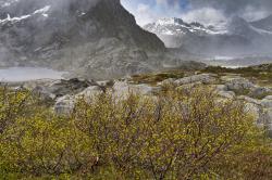 Mt Vågakallen, Lofoten,  Norway