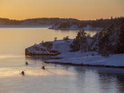 Winter kayaking, Stockholm archipelago