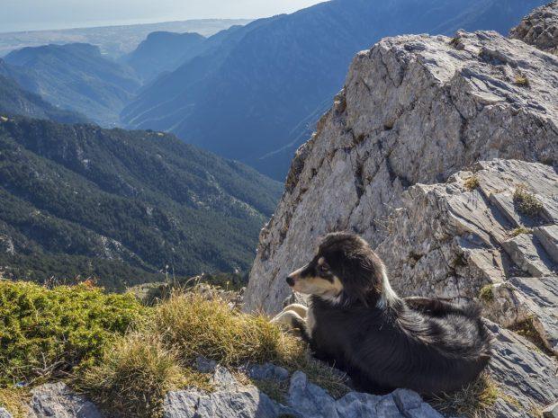 Sarek far godkant av nationalparken